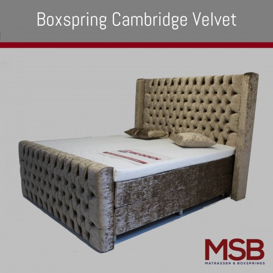 Cambridge Velvet