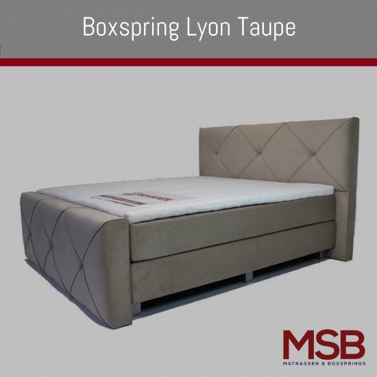 Lyon Taupe