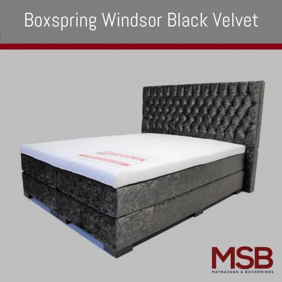 Windsor Black Velvet